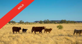 Rural / Farming commercial property for sale at 359 Crewkerne Road Muttaburra QLD 4732