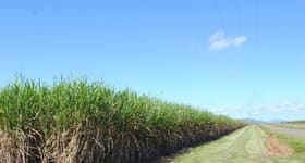 Rural / Farming commercial property sold at Stephenson & Rinaudo Road Lower Cowley QLD 4871