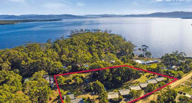 Hotel, Motel, Pub & Leisure commercial property for sale at 20 Lighthouse Road Lunawanna TAS 7150