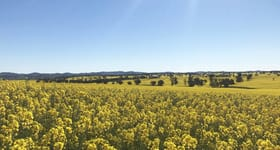 Rural / Farming commercial property sold at Temora NSW 2666