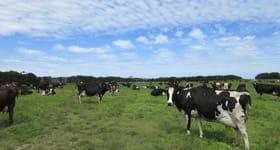 Rural / Farming commercial property for sale at 296 Marshalls Road Nugara TAS 7256