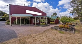 Shop & Retail commercial property for sale at 243 Gilbert Street Latrobe TAS 7307