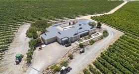 Rural / Farming commercial property sold at 234 Moritz Road Blewitt Springs SA 5171