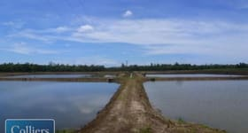 Rural / Farming commercial property for sale at * Eden Road Cowley QLD 4871