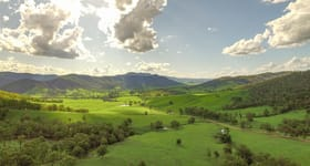 Rural / Farming commercial property for sale at Nowendoc NSW 2354
