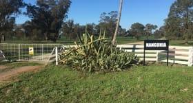 Rural / Farming commercial property for sale at Nangunia Station Yarrawonga Road Berrigan NSW 2712