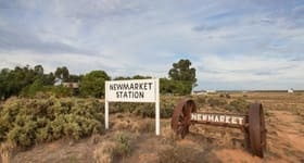 Rural / Farming commercial property for sale at Hay South NSW 2711
