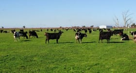 Rural / Farming commercial property for sale at VIC