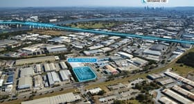 Factory, Warehouse & Industrial commercial property for sale at 1149 Kingsford Smith Drive Pinkenba QLD 4008