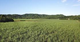 Rural / Farming commercial property for sale at East Feluga Road East Feluga QLD 4854