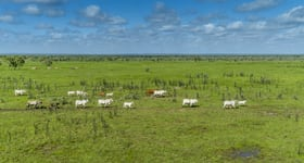 "Rural / Farming commercial property sold at ""Tanumbirini"" and ""Forrest Hill"" Daly Waters NT 0852"