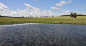 Rural / Farming commercial property sold at For Sale: Glenroy Dunedoo NSW 2844