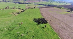 Rural / Farming commercial property sold at Mount Falcon Station Welumba Creek Road Tooma NSW 2642
