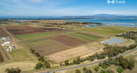 Rural / Farming commercial property for sale at Land under lease/45 Lewisham Road Forcett TAS 7173