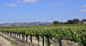 Rural / Farming commercial property for sale at Six Gates Vineyard 1234 Barossa Valley Way Lyndoch SA 5351