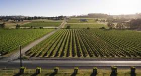 Rural / Farming commercial property for sale at Flatview and White Hut Vineyards Horrocks Highway Stanley Flat SA 5453