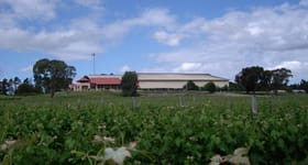 Rural / Farming commercial property for sale at Heathfield Winery Riddoch Highway Naracoorte SA 5271