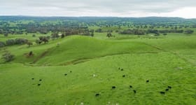 Rural / Farming commercial property for sale at Constitution Hume Highway Holbrook NSW 2644