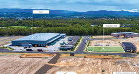 Showrooms / Bulky Goods commercial property for lease at LOT 7 LOGISTICS PLACE Arundel QLD 4214