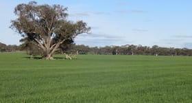 Rural / Farming commercial property sold at 405 Sheahan Road Dale WA 6304