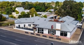 Hotel, Motel, Pub & Leisure commercial property for sale at 28 Musgrave Avenue Lucindale SA 5272