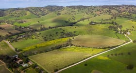 Rural / Farming commercial property for sale at Lot 102 Hoffnungsthal Road Williamstown SA 5351