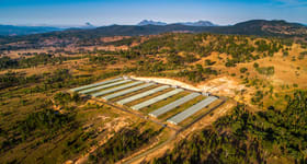 Rural / Farming commercial property for sale at QLD