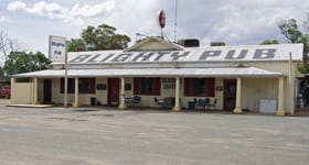Hotel, Motel, Pub & Leisure commercial property for sale at 18948 Riverina  Highway Blighty NSW 2713