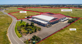 Rural / Farming commercial property for sale at 77 Big Olive Grove Tailem Bend SA 5260