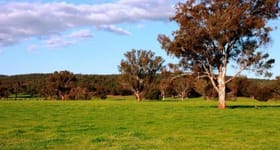 Rural / Farming commercial property sold at 2242 Nangar Road Canowindra NSW 2804