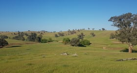 Rural / Farming commercial property for sale at 58 Fairfield Road Wagga Wagga NSW 2650