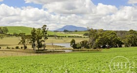 Rural / Farming commercial property for sale at 1311 Pipers Brook Road Pipers Brook TAS 7254