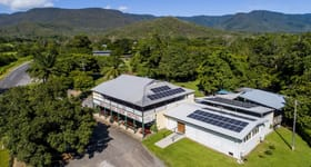Hotel, Motel, Pub & Leisure commercial property for sale at 864 Gillies Range Road Little Mulgrave QLD 4865