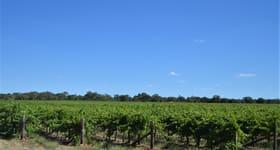 Rural / Farming commercial property sold at 364 Bool Lagoon West Road Bool Lagoon SA 5271