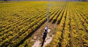 Rural / Farming commercial property for sale at Reginald Reschke & Henry Albert Vineyards Magarey Lane Glenroy SA 5277