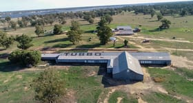 Rural / Farming commercial property sold at 14070 Sturt Highway Darlington Point NSW 2706