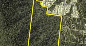 Development / Land commercial property for sale at Lot 164 Jubilee Pocket Road Jubilee Pocket QLD 4802