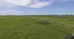 Rural / Farming commercial property sold at 955 Kaladbro Road Strathdownie VIC 3312