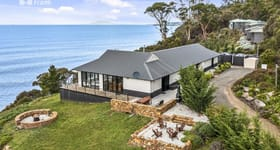 Hotel, Motel, Pub & Leisure commercial property for sale at 12164 Tasman Highway Rocky Hills TAS 7190