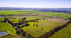 Grazing commercial property for sale at 82 Fromm Road Tanunda SA 5352
