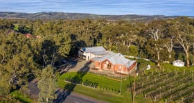 Rural / Farming commercial property for sale at 114 Blewitt Springs Road Mclaren Flat SA 5171