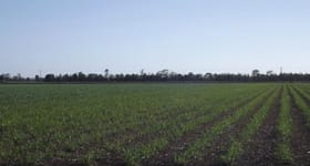 Rural / Farming commercial property sold at 397 EARDLEYS Road Moore Park Beach QLD 4670