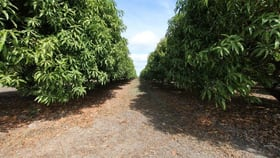 Rural / Farming commercial property for sale at Lot 2 Kirknie Road Home Hill QLD 4806
