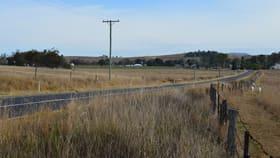 Rural / Farming commercial property for sale at 26 Yangan-Killarney Road Tannymorel QLD 4372