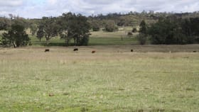 Rural / Farming commercial property for sale at Lot 27 Rosenthal Road Rosenthal Heights QLD 4370