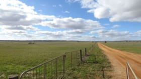 Rural / Farming commercial property for sale at Walkaway WA 6528