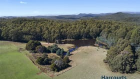 Rural / Farming commercial property for sale at 1027A Upper Natone Road Upper Natone TAS 7321