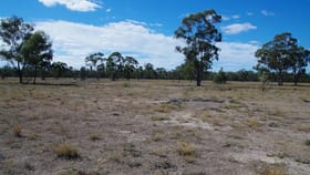 Rural / Farming commercial property for sale at 819 Werah Creek Road Wee Waa NSW 2388