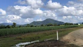 Rural / Farming commercial property for sale at Lot 2 And  4 Granadilla Road Granadilla QLD 4855