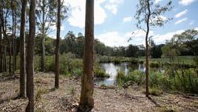 Rural / Farming commercial property for sale at Lot 1 Tathra-Bermagui Road Murrah NSW 2550